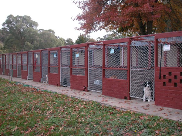 Choosing a kennel or cattery, meridian